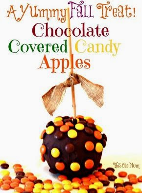 Chocolate Covered Candy Apples