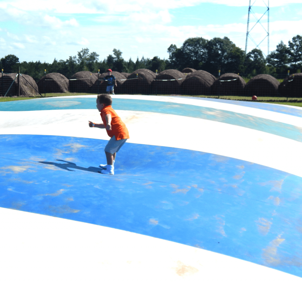 Family Fall Fun at Steele's Pumpkin Patch and Corn Maze - This Ole Mom