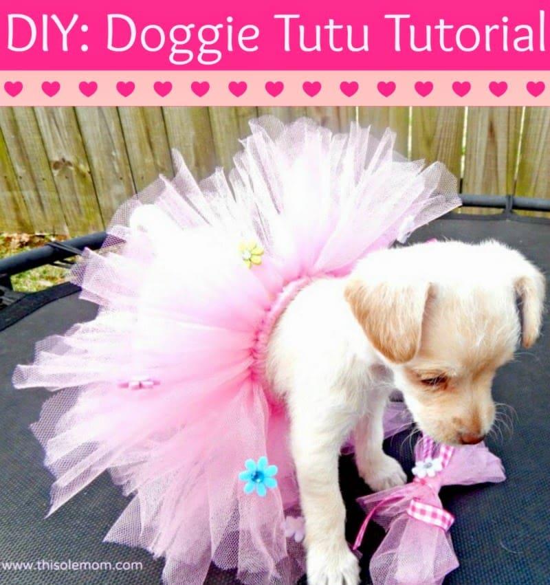 Diy doggie tutu tutorial this ole mom pet tutu dog tutu cat tutu how to make a dog tutu solutioingenieria Choice Image