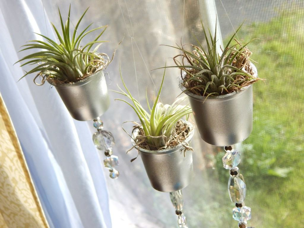 Up Cycled K-Cup Planters