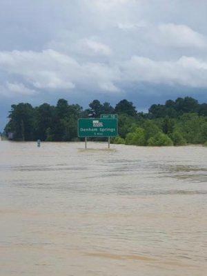 Louisiana Flooding: Volunteers Unite to Help Flood Victims
