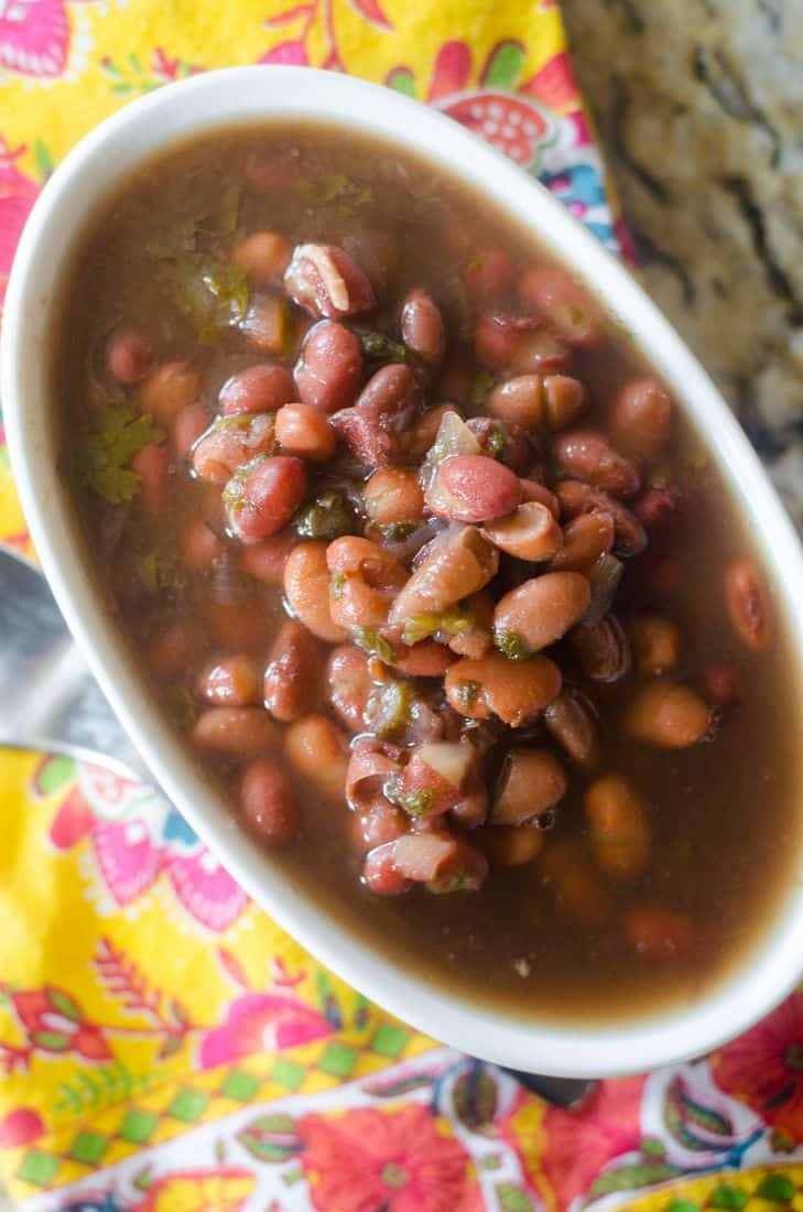 Instant Pot Two Bean Soup