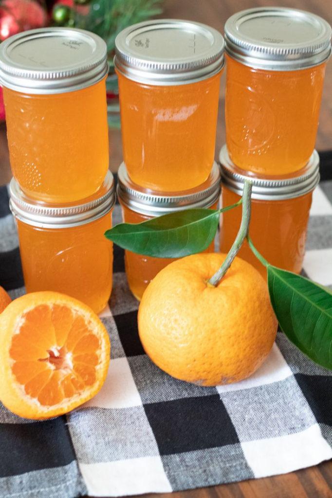 Satsuma Jelly Recipe in jars
